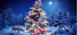 Поздравляем с наступающим  Новым 2015 годом и Рождеством!
